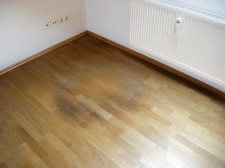 Flooring and Water Damage